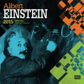 Browntrout Publishers 12in. x 12in. Einstein Wall Calendar