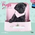 Browntrout Publishers 12in. x 12in. Myrna Luv Pugs Wall Calendar