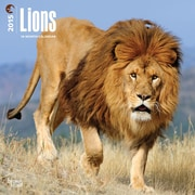 Browntrout Publishers 12 x 12 Lions Wall Calendar