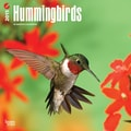 Browntrout Publishers 12in. x 12in. Hummingbirds Wall Calendar