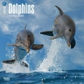 Browntrout Publishers 12in. x 12in. Dolphins Wall Calendar