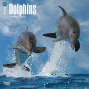 Browntrout Publishers 12 x 12 Dolphins Wall Calendar