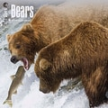 Browntrout Publishers 12in. x 12in. Bears Wall Calendar
