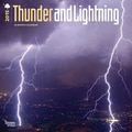 Browntrout Publishers 12in. x 12in. Thunder and Lightning Wall Calendar