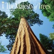 "Browntrout Publishers 12"" x 12"" The Majesty of Trees Wall Calendar"