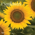 Browntrout Publishers 12in. x 12in. Sunflowers Wall Calendar