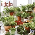 Browntrout Publishers 12in. x 12in. Herbs Wall Calendar