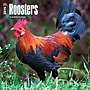 Browntrout Publishers 12 x 12 Roosters Wall Calendar