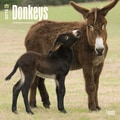Browntrout Publishers 12in. x 12in. Donkeys Wall Calendar
