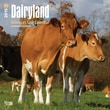 """Browntrout Publishers 12"""" x 12"""" Dairyland - America's Cow Wall Calendar"""