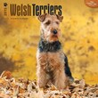 "Browntrout Publishers 12"" x 12"" Welsh Terriers Wall Calendar"