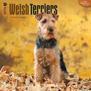 """Browntrout Publishers 12"""" x 12"""" Welsh Terriers Wall Calendar"""