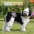 Browntrout Publishers 12in. x 12in. Tibetan Terriers Wall Calendar