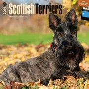"Browntrout Publishers 12"" x 12"" Scottish Terriers Wall Calendar"