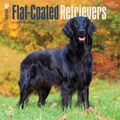 Browntrout Publishers 12in. x 12in. Flat-Coated Retrievers Wall Calendar