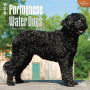 Browntrout Publishers 12 x 12 Portuguese Water Dogs Wall Calendar