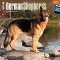 Browntrout Publishers 12in. x 12in. German Shepherds Wall Calendar