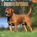 Browntrout Publishers 12in. x 12in. Dogue de Bordeaux Wall Calendar