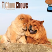 Browntrout Publishers 12 x 12 Chow Chows Wall Calendar