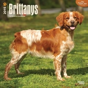 Browntrout Publishers 12 x 12 Brittanys Wall Calendar
