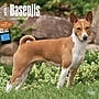 Browntrout Publishers 12 x 12 Basenjis Wall Calendar