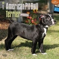 Browntrout Publishers 12in. x 12in. American Pit Bull Terrier Puppies Wall Calendar