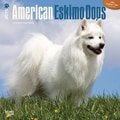 Browntrout Publishers 12in. x 12in. American Eskimo Dogs Wall Calendar