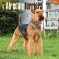 Browntrout Publishers 12in. x 12in. Airedale Terriers Wall Calendar