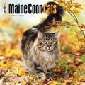 Browntrout Publishers 12in. x 12in. Maine Coon Cats Wall Calendar