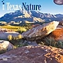 Browntrout Publishers 12 x 12 Texas Nature Wall