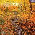 Browntrout Publishers 12in. x 12in. Wild & Scenic Connecticut Wall Calendar