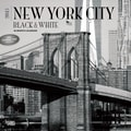 Browntrout Publishers 12in. x 12in. New York City Black and White Wall Calendar