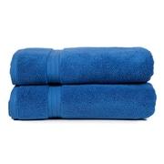 Pure Fiber Zero Twist Hand Towel (Set of 2); Blue