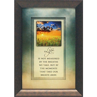 Artistic Reflections Life Is Not Measured by The Breaths by Brett West Framed Graphic Art