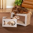 Enchanted Home Pet Cats Out Of The Bag Scratcher