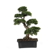 "Nearly Natural 4103 24"" Cedar Bonsai Plant in Pot"