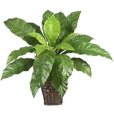 Nearly Natural 6530 Birds Nest Fern Desk Top Plant in Decorative Vase
