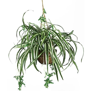 Nearly Natural 6607 Spider Hanging Plant in Basket
