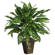 Nearly Natural 6615 Silver King with Basket Plant in Pot