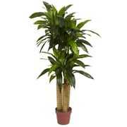 Nearly Natural 6648 4' Corn Stalk Plant in Pot