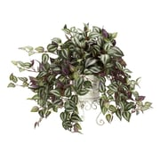 Nearly Natural 6697 Wandering Jew Desk Top Silk Plant in Decorative Vase