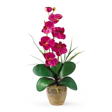 Nearly Natural 1016-BU Phalaenopsis Floral Arrangements, Beauty pink