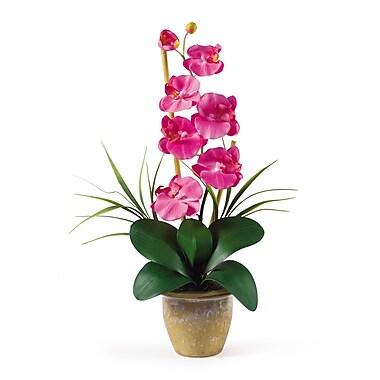 Nearly Natural 1016-DP Phalaenopsis Floral Arrangements, Dark pink