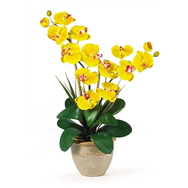 Nearly Natural 1026-GD Double Phalaenopsis Floral Arrangements, Yellow