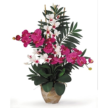 Nearly Natural 1071-BW Phal Dendrobium Floral Arrangements, Beauty Pink/White