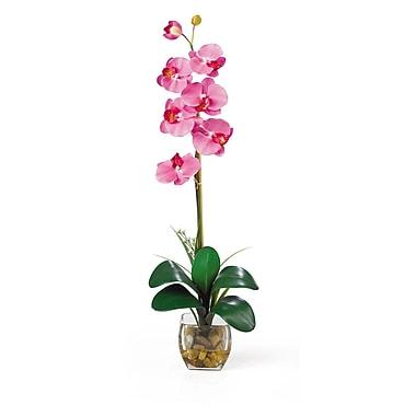 Nearly Natural 1104-DP Single Phalaenopsis Floral Arrangements, Dark pink