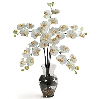 Nearly Natural 1106-CR Phalaenopsis Silk Floral Arrangements, Cream