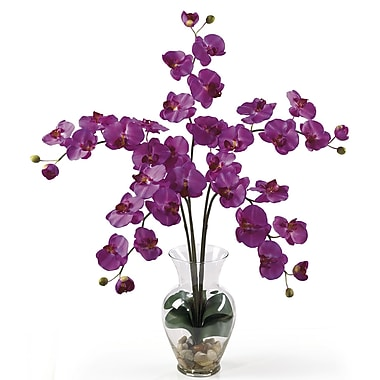 Nearly Natural 1106-OR Phalaenopsis Silk Floral Arrangements, Orchid