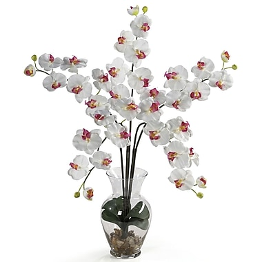 Nearly Natural 1106-WH Phalaenopsis Silk Floral Arrangements, White