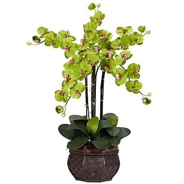 Nearly Natural 1211-GR Phalaenopsis with Vase Floral Arrangements, Green